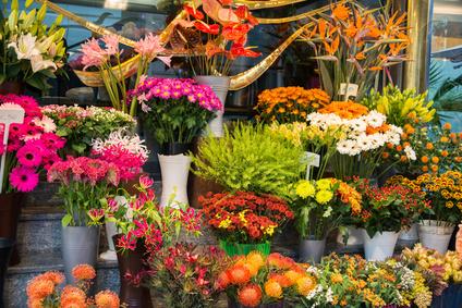 Blumen Düren, Bonn-Duisdorf