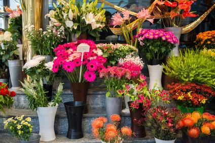 Blumen Heinen, Bonn-Poppelsdorf
