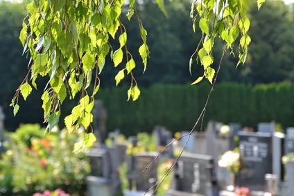 Burgfriedhof, Bonn-Bad Godesberg
